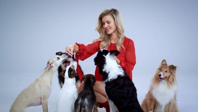 """""""Misja Pies"""": Zgłoś się do programu Joanny Krupy"""