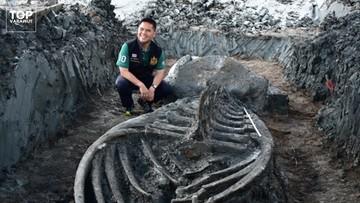 Szkielet sprzed tysięcy lat. Nietypowe odkrycie w Tajlandii