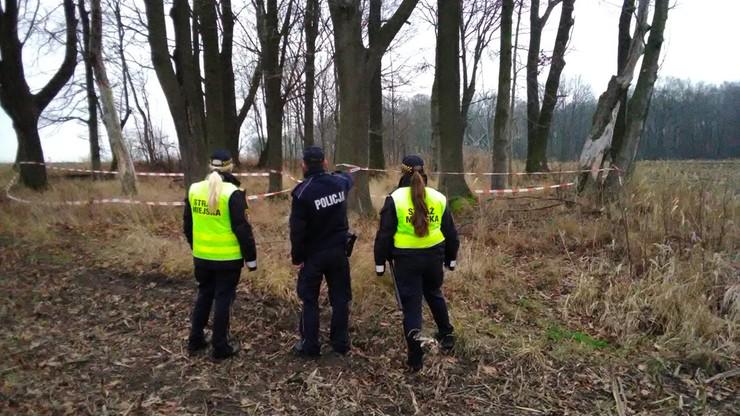 Gliwice: ciała martwych kóz na polu. Policja prowadzi śledztwo