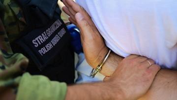 Poszukiwany czerwoną notą Interpolu zatrzymany na polskiej granicy