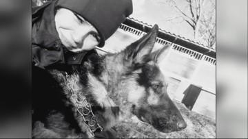 Awaria ciepłownicza w Warszawie. Zginęło 6 policyjnych psów