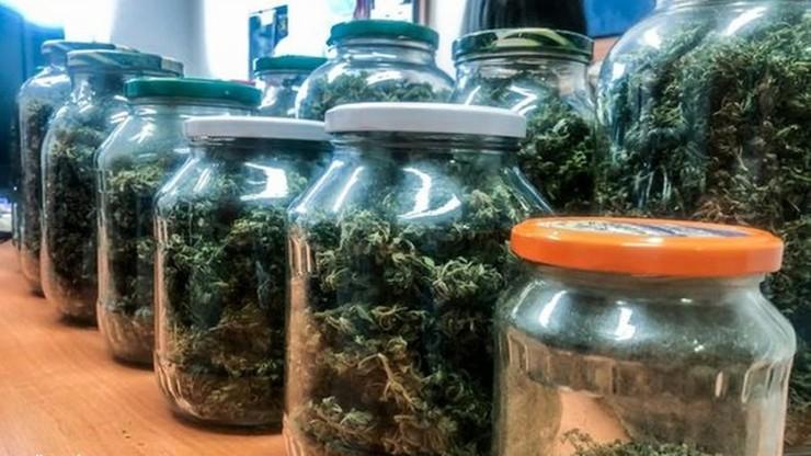 Nalot na domek letniskowy. 60-latek zamiast przetworów trzymał w słoikach marihuanę