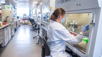 Wielka Brytania: rozpoczął się proces dopuszczania szczepionki do użycia