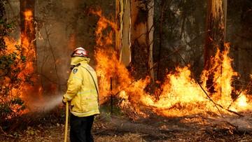 Odwołany Rajd Australii. Gigantyczne pożary, stan wyjątkowy, ofiary śmiertelne