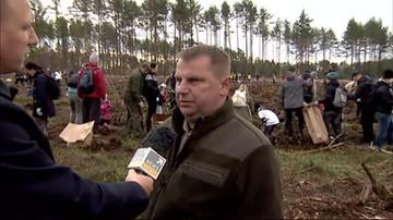 Wspólnie sadzili drzewa w miejscu lasu zniszczonego przez burzę. Półtora tysiąca ochotników