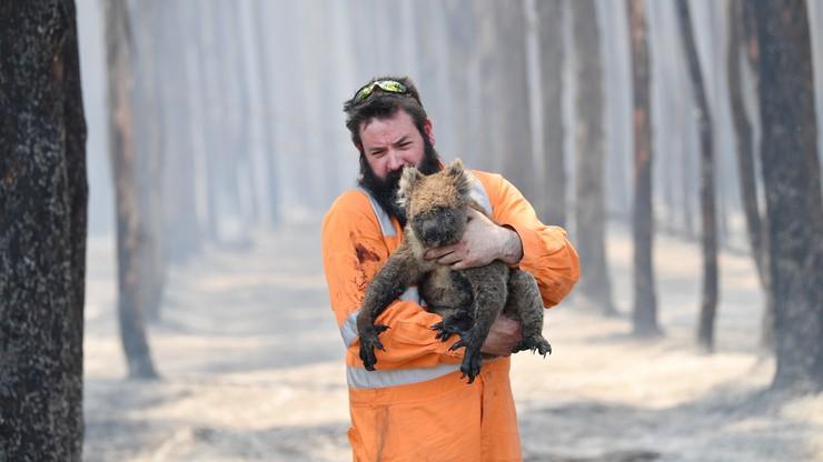 Pożary w Australii