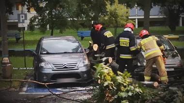 Drzewo złamane, samochody uszkodzone, ale winnych brak