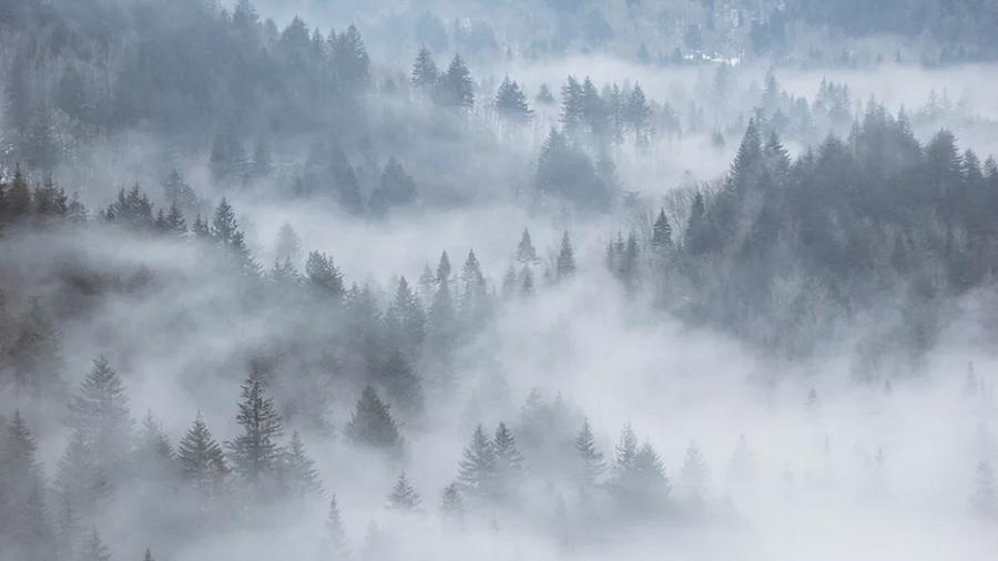 20.10.2019 09:00 Uwaga na gęste mgły! Wieczorami, nocami i o porankach będą spowijać drogi i nasze miejscowości