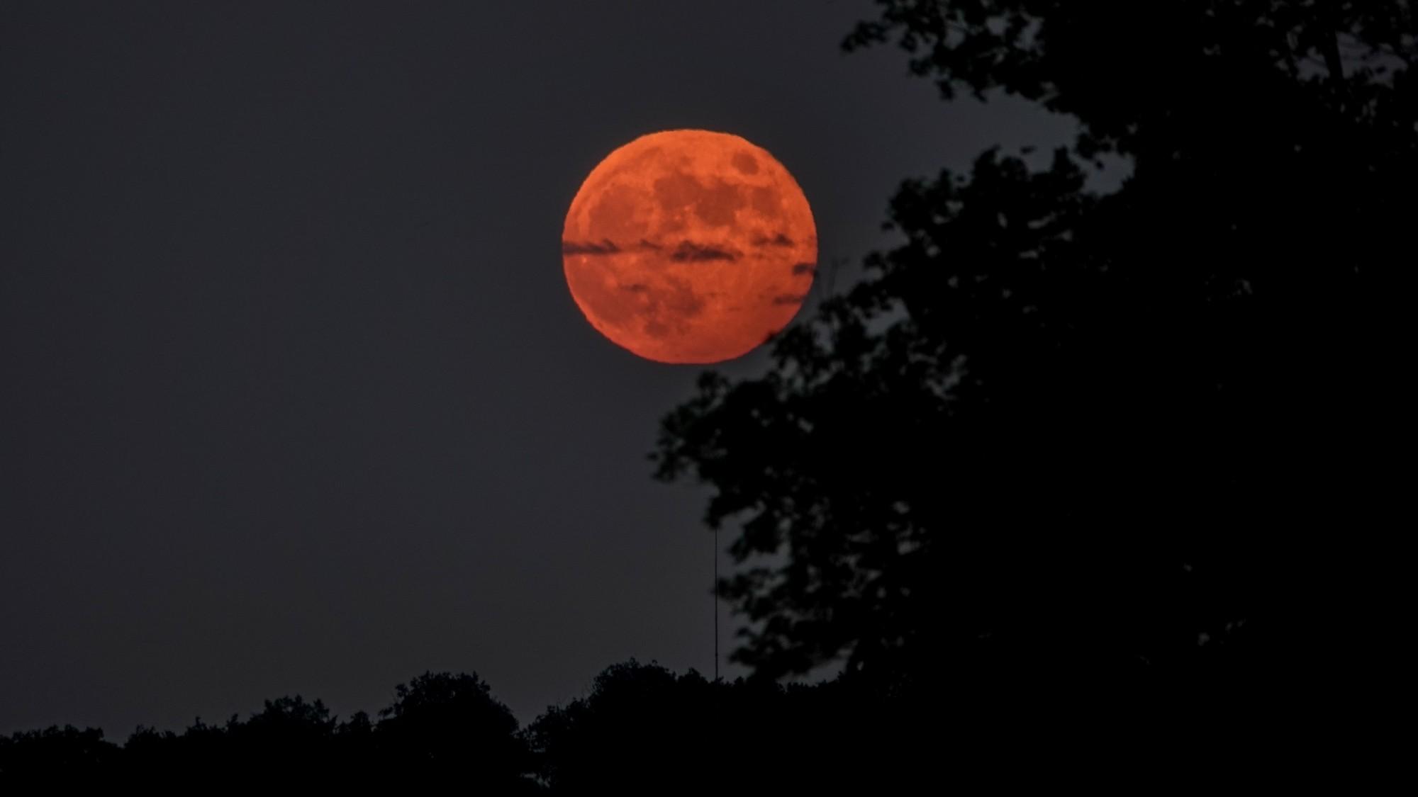 Pełnia Truskawkowego Księżyca - zdjęcie 1