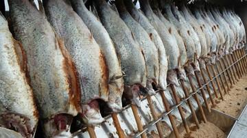 Unia praktycznie zakazuje połowów dorszy we wschodnim Bałtyku
