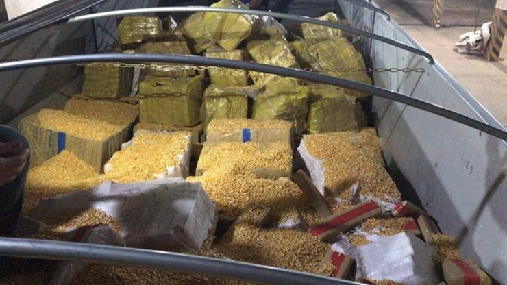 Tir miał wieźć kukurydzę. Było na nim 28 ton marihuany [WIDEO]