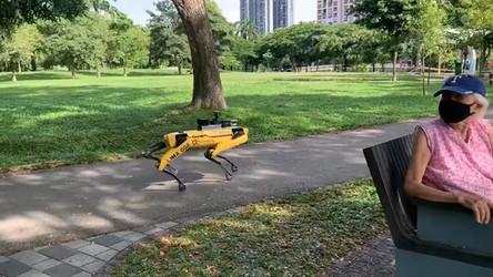 Robo-psy SpotMini patrolują ulice Singapuru i ostrzegają przed CoVID-19 [FILM]