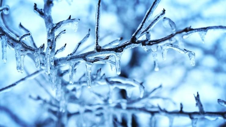 Temperatura może spaść nawet do -16 stopni. Ostrzeżenie przed mrozem
