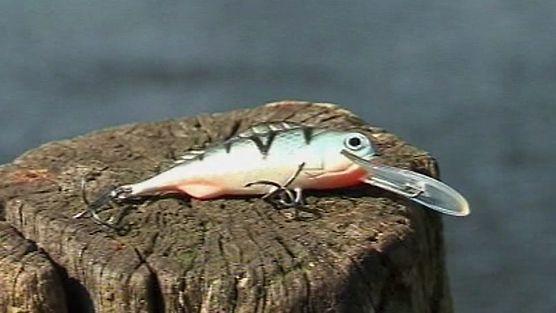 Taaaka ryba - Odcinek 31