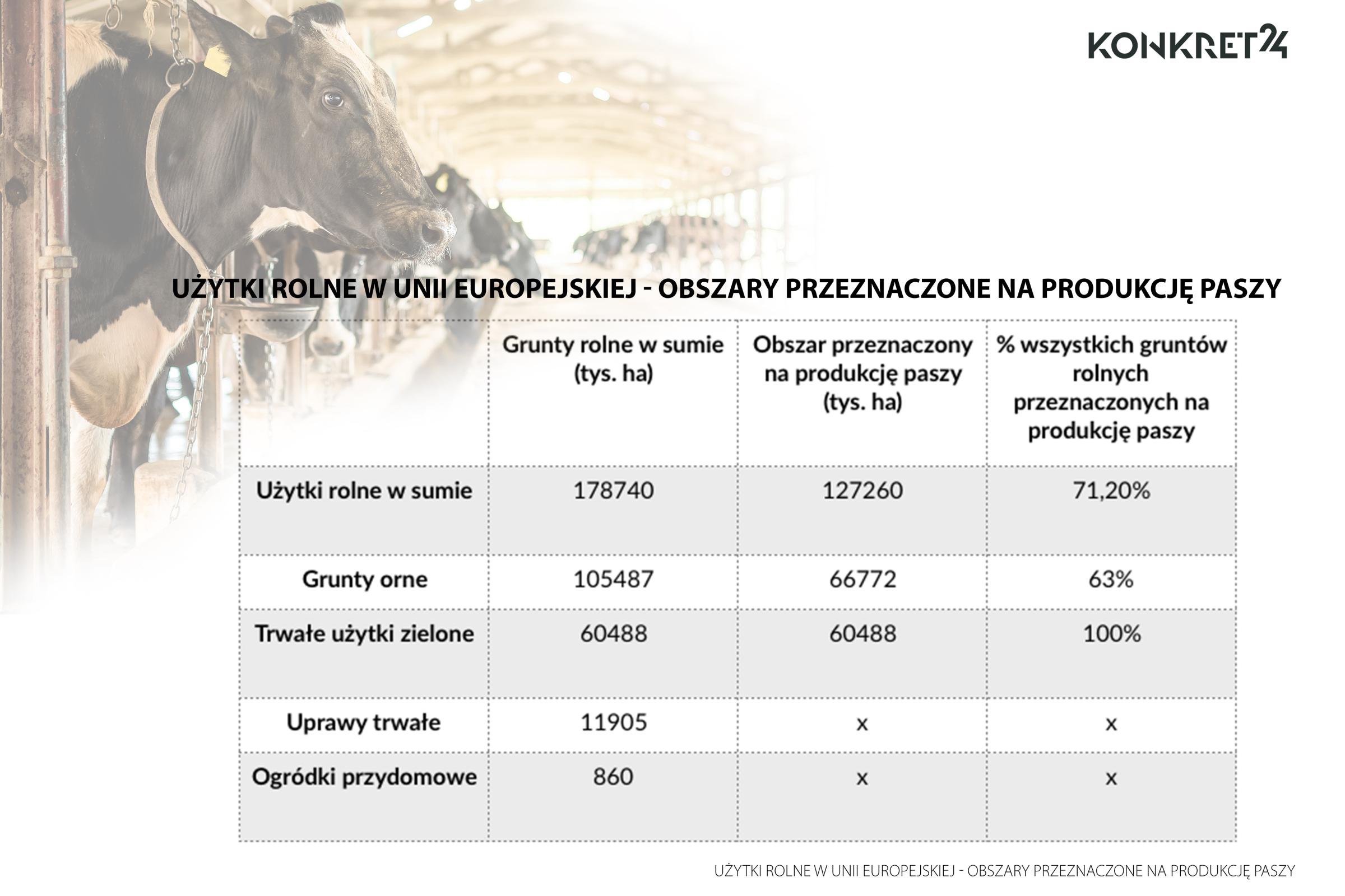 63 proc. wszystkich gruntów ornych w UE to obszary przeznaczone pod uprawy na paszę dla zwierząt gospodarczych