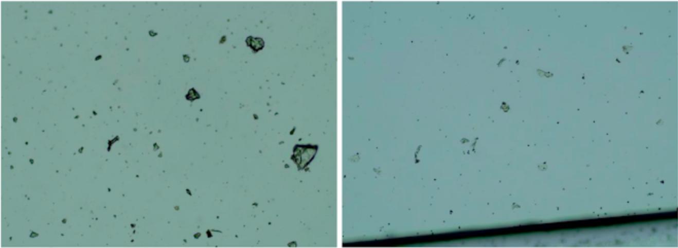 Rzekome cząsteczki grafenu w szczepionce (po lewej) i w standardzie zredukowanego tlenku grafenu (po prawej)