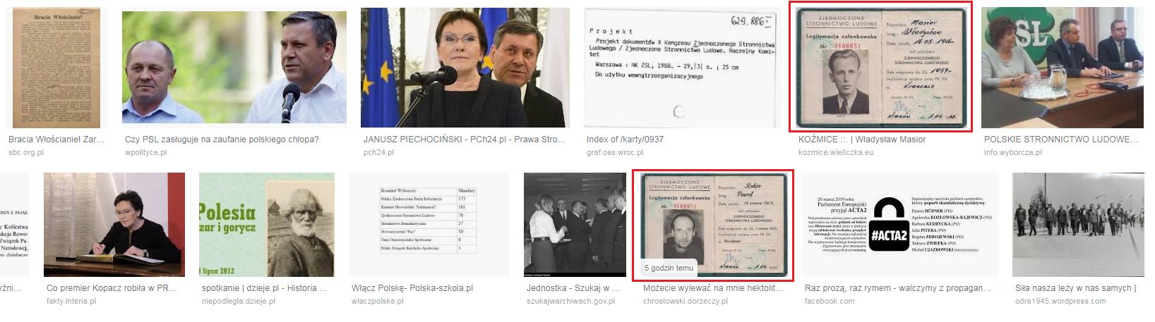 """Wyniki wyszukiwania frazy """"Zjednoczone Stronnictwo Ludowe"""" w Google Grafika"""
