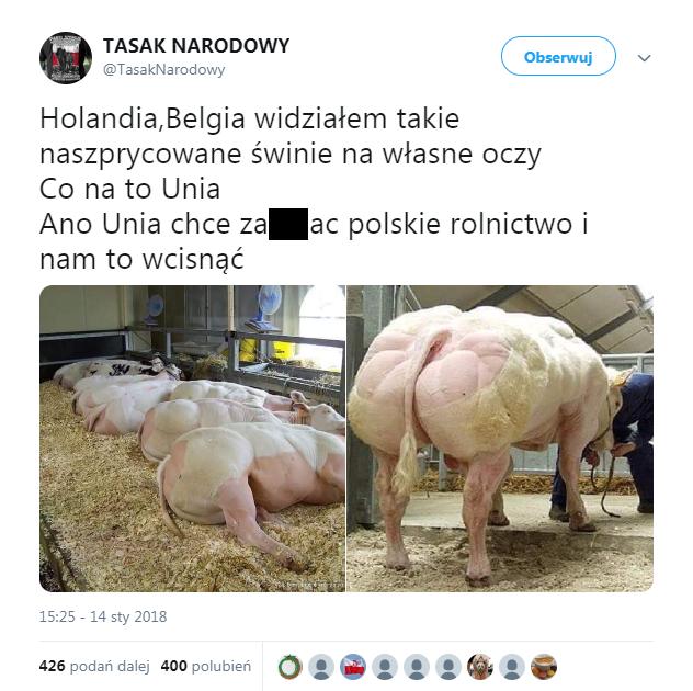 """Wpis o """"naszprycowanych świniach"""" i Unii Europejskiej"""